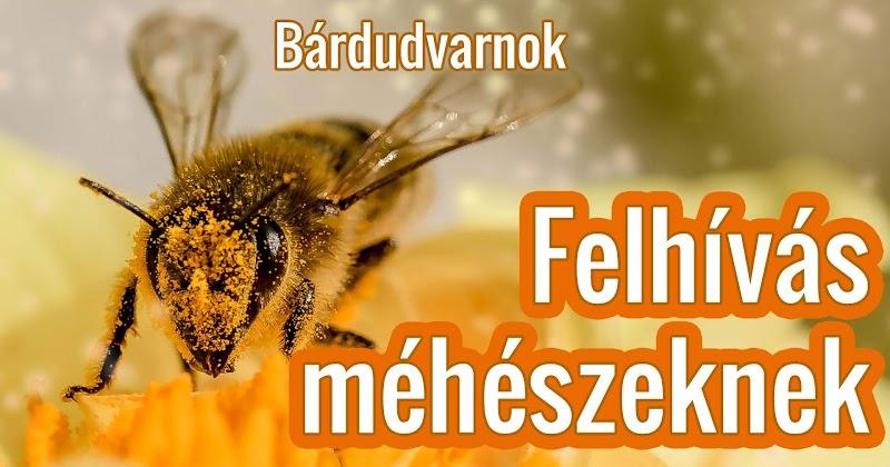 Tájékoztatás méhészeknek 2018 június