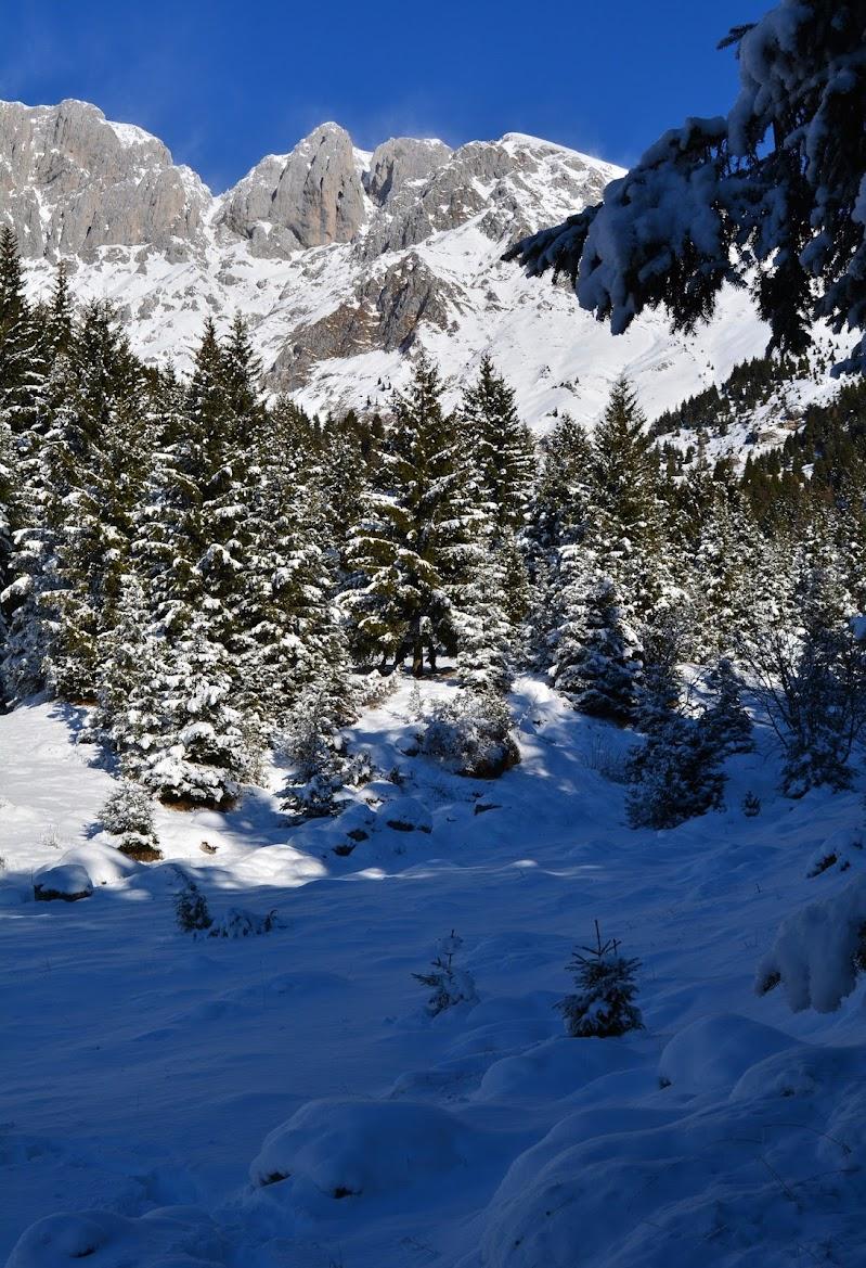 luci e ombre sulla neve di alegio89