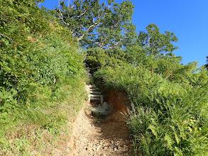 道がえぐれ(階段設置)