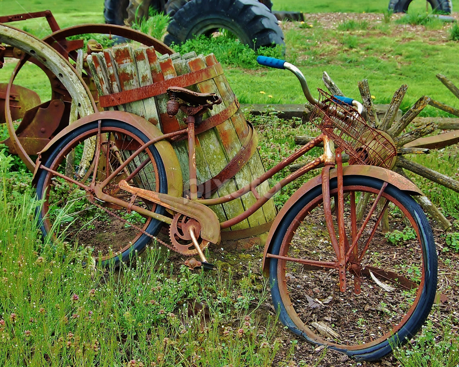 by Alice Martin - Transportation Bicycles