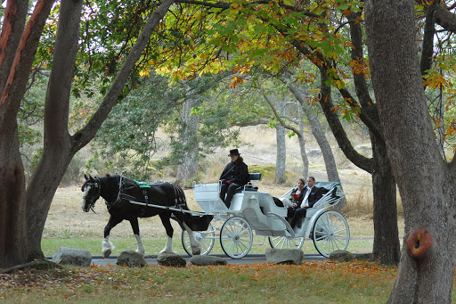 Victoria-BC-Carriage-tours.jpg - Venture back to simpler times and take a carriage ride through Victoria, BC.