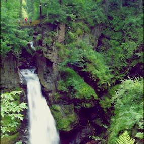 Fairytale by Marta Bednarska - Landscapes Waterscapes