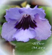 Photo: Blue Mars