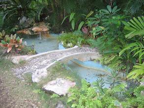 Photo: Yoga Retreat, Bahamas - meditative pond