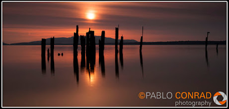 Photo: © Paul Conrad/Pablo Conrad Photography Old pylons at Locust Beach in Bellingham Bay in Bellingham, Wash., during sunset on Thursday Oct. 27, 2011.