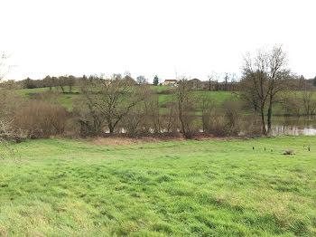 terrain à Ansac-sur-Vienne (16)