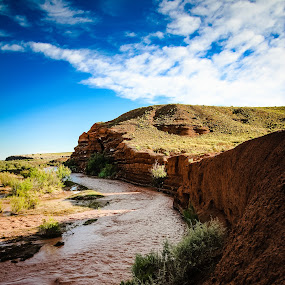 The Little Colorado by Mathan Tenney - Landscapes Deserts ( blue skies, the southwest, morning, landscape, muddy, blue sky, river bend, northern arizona, woodruff, little colorado, arizona, bend in the river, brown, river bank, river )