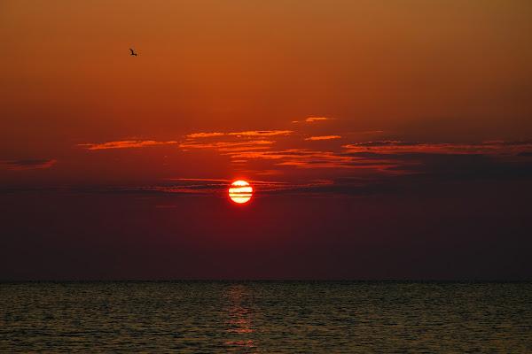 i colori dell alba.. di gianluca_simotti