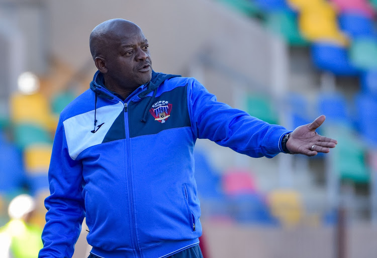 Chippa United head coach Dan Malesela reacts on the touchline during a Absa Premiership match against Bloemfontein Celtic at Dr Molemela Stadium in Bloemfontein on August 5 2018.