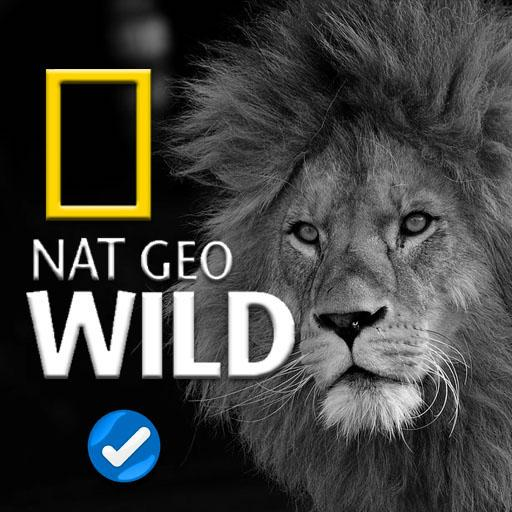 Free nat geo wild videos 2018 for android apk download.