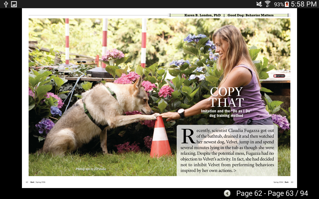 The Bark: dog culture magazine- screenshot