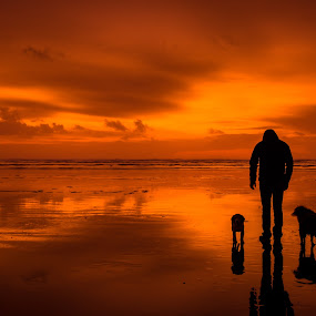 A Walk on the Beach by Penny Miller - Landscapes Sunsets & Sunrises ( pacific beach, orange sunset, washington beach, beach sunset, sunset at washington beach, silhouette on the beach, dog and man on the beach at sunset,  )
