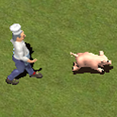 Pig Escape Plan