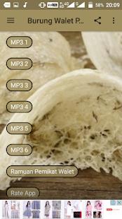 Burung Walet Pemikat Mp3 - náhled