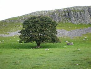 Photo: Great Close Hill near Malham Tarn