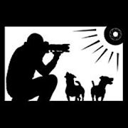 El fotógrafo de perros APK