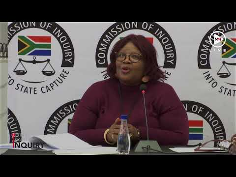 Vytjie Mentor has has accused the state capture commission of lacking fairness.