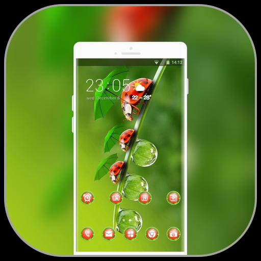 Theme for cute ladybug macro wallpaper icon