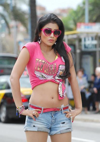 Shriya Saran sexy navel