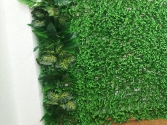 Thế mạnh đàn hồi tốt và khả năng chịu đựng bão tố của cỏ nhân tạo