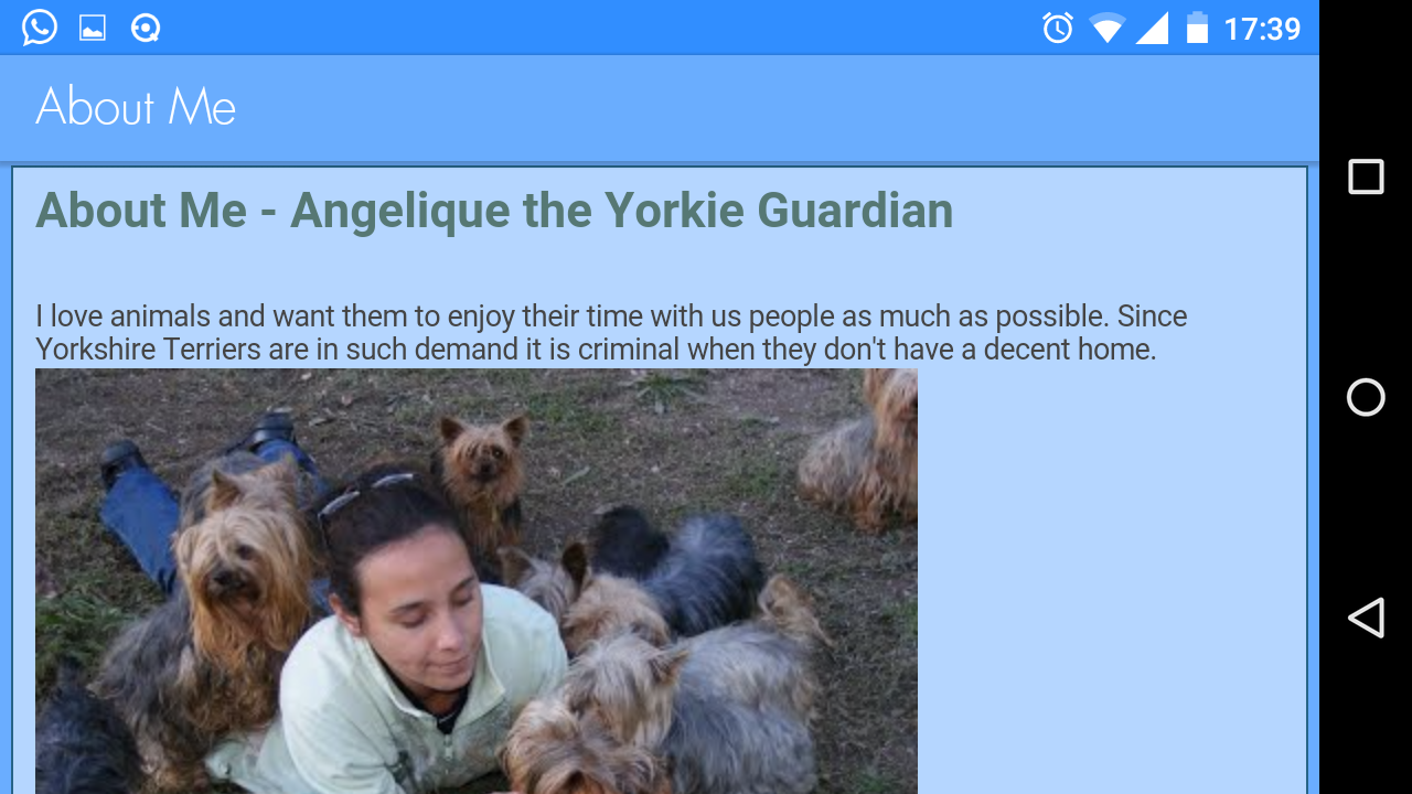 SA Yorkie Rescue- screenshot
