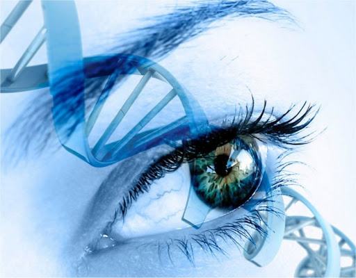 Cell Biologist Proves How Emotions Can Change Your DNA