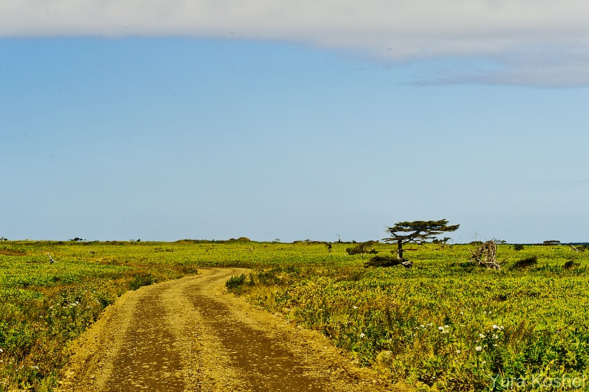 Остров Итуруп. На тихоокеанской волне