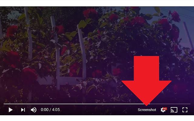 Screenshot Youtube Chrome Web Store