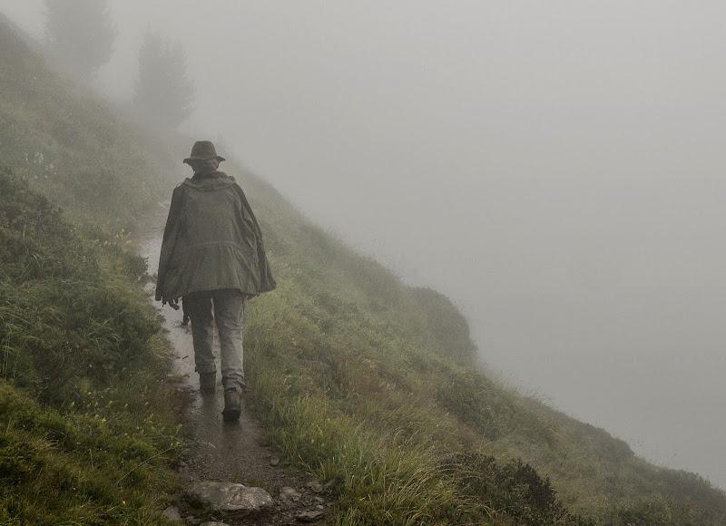 Solitario nella nebbia di Diana Cimino Cocco
