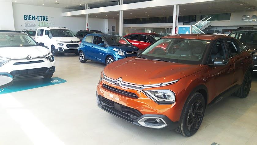 Ofertas Flash de Salinas Car.