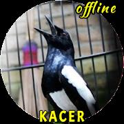 Masteran Kacer Gacor Ngeplong MP3
