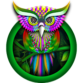 Green Owl Forest Theme