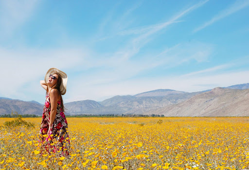 Jessica Hartmann of Cruiseable poses amid a field of wildflowers in Anza-Borrego Desert State Park, two hours north of San Diego.