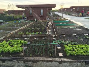 Photo: Hobi Bahçemin son hali, herkes en güzel bahçe sizinki diyor.