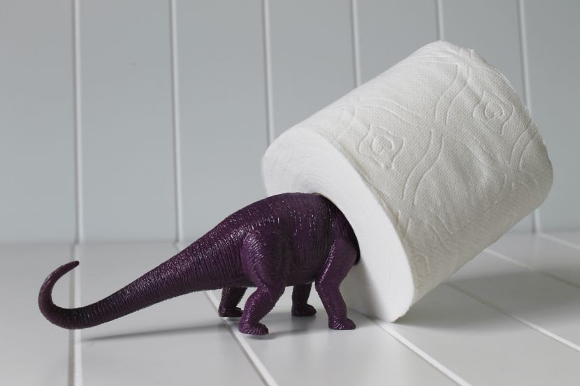 Need someplace to store the extra roll of bath tissue? Find a larger plastic dinosaur and spray paint it to match your jars.  Easy peasy!