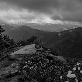 Approaching Storm at Hawksbill 2 by Jonathan Wheeler - Black & White Landscapes ( blue ridge mountains, nc mountains, spring storm, hawksbill mountain, linville gorge )