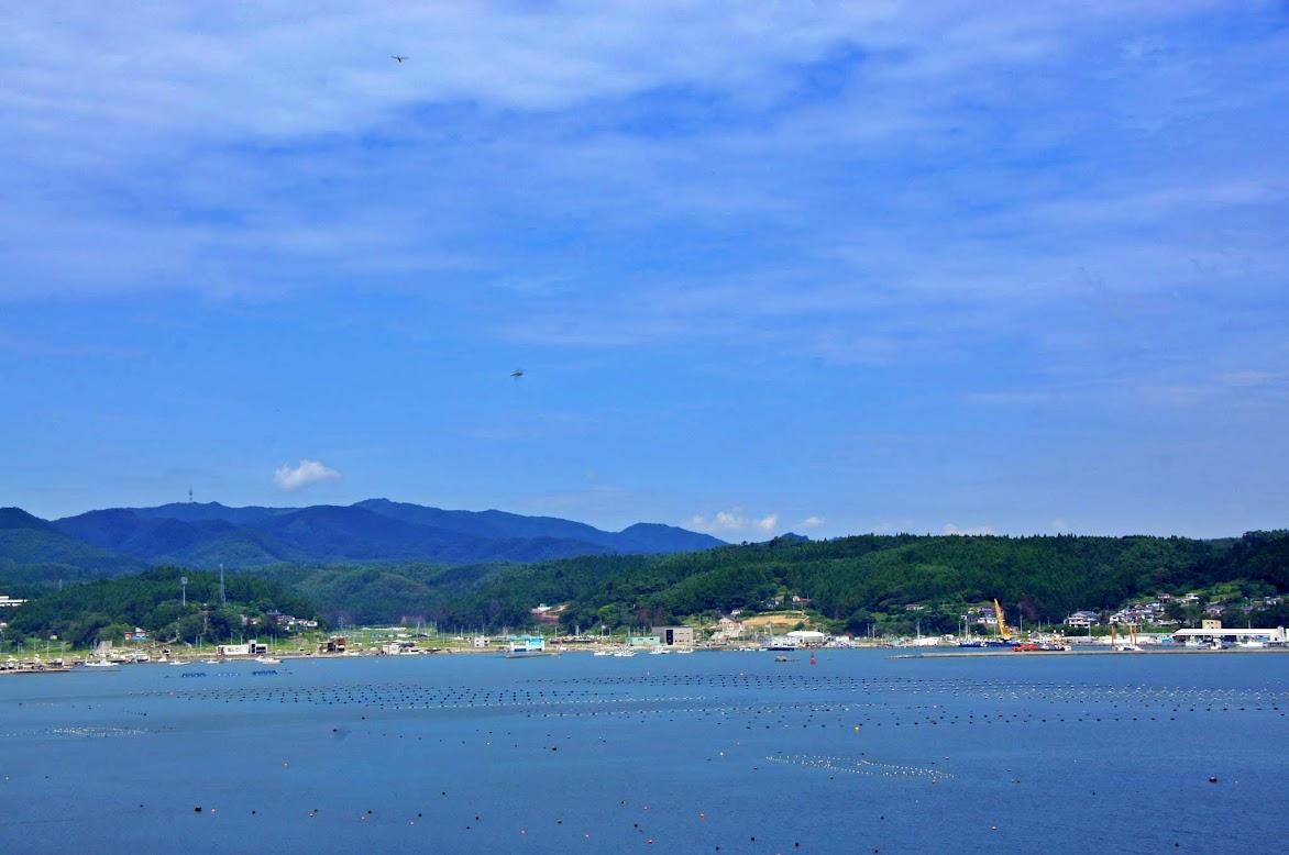 今日の志津川湾