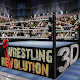 Wrestling Revolution 3D (game)