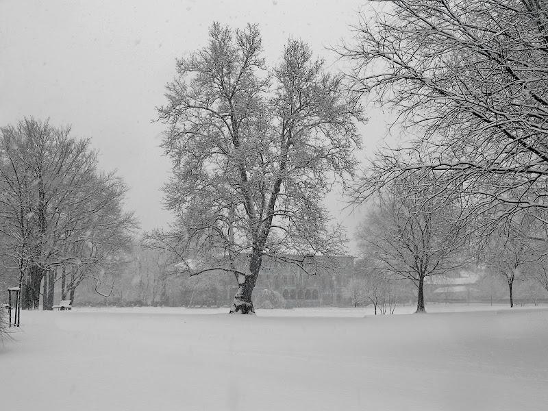 Nevica sul Parco Litta di -Os-