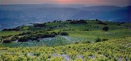 Панорамы Троодоса