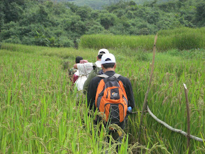 Photo: Trek from Ban Nam Ha-2 Days Green Trail Trek-Trekking in Luang Namtha, Laos