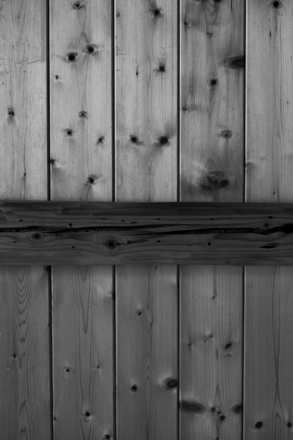 Venature del legno di giuliaf