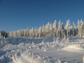 Photo: Syötäväksi kelpaava lumi on joko valkoista tai sinertävää...
