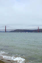 Photo: Saturday August 6th 2011 -PRE-SAIL DAY World Laser Masters Championship, San Francisco Laser sailors practice on the bay the day before the races begin.
