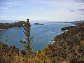 Photo: View from the Abel Tasman walking trail.