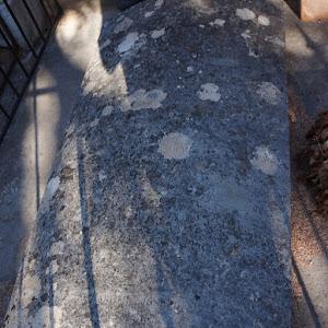 pierre tombale maculée de mousses par le temps