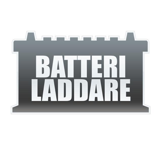 Batteriexpressen - Batteriladdare