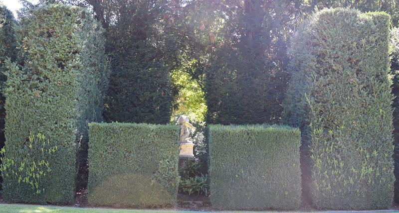 labirinto  di elena_mainardi