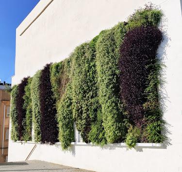 Jardines verticales Gandia