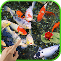 Koi Garden Live Wallpaper icon